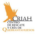 Logotipo FCQ