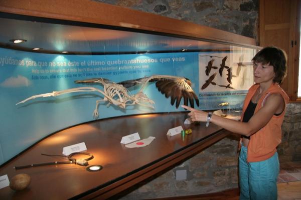 Vitrinas Ecomuseo de Aínsa