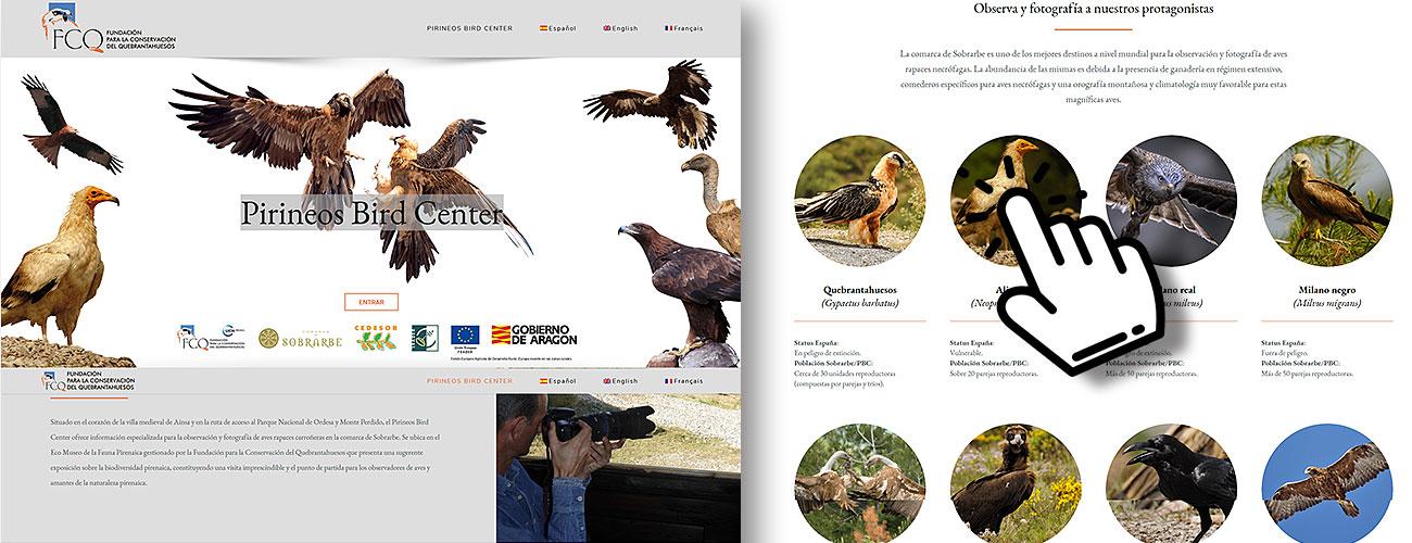 Pirineos Bird Center