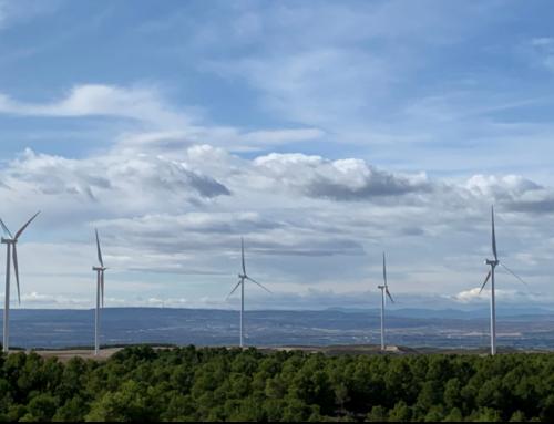 Más de 50 entidades piden a las Cortes aragonesas una moratoria para los proyectos eólicos.